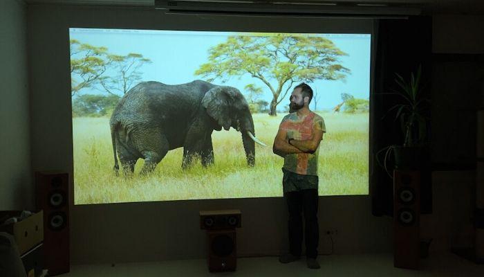 Projektor Leinwand Wählen Sie Ihr Ideales Produkt Smarter